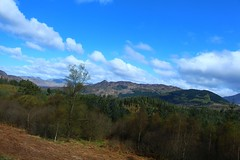 View from the Duke Pass in the Trossachs (Eddie Crutchley) Tags: europe uk scotland outdoor landscape blueskies trees simplysuperb greatphotographers