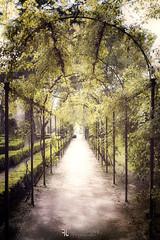 El Capricho 2 (Franz - Jimenez) Tags: madrid españa spain elcapricho parque jardin garden park openair landscape gate tunnel canon eos600d