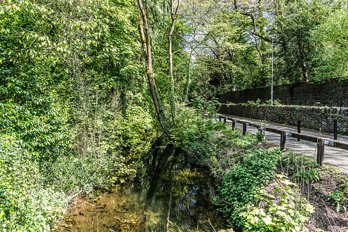 THE RIVER NORE CANAL WALK [KILKENNY CITY]-127691