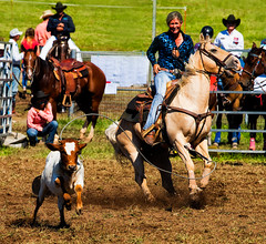 No-getaway_DSC4391 (Mel Gray) Tags: dungogrodeo dungogrodeo2017 dungog newcastle hunterregion annualevent eastersaturday melgrayphotography cowboys cowgirls equestrianevents roping