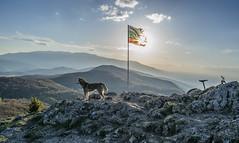 wolf (alexzanderII) Tags: wolf mountain landscape bike bulgaria