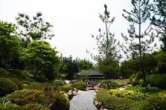 JARDINES DE MEXICO (fco_galan34) Tags: jardines mexico naturaleza natural morelos paisajismo ecosistemas flores colores plantas arboles japon japones puente