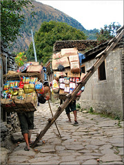 Porters in Larjung at a difficult crossing. (Bernergieu) Tags: nepal larjung people porter culture