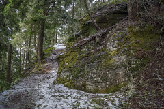 Rampart Ridge (writing with light 2422 (Not Pro)) Tags: mountrainiernationpark washingtonstate landscape snow trail hikingtrail rampartridge richborder sonya77 green
