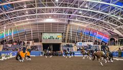 17429_Sydney_CDI_GPFS_Pres_7042.jpg (FranzVenhaus) Tags: athletes dressage australia equestrian riders horses ponies rug siec nsw sydney newsouthwales aus