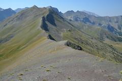 Montagne de l'Alpe au Col Bas (RarOiseau) Tags: montagne alpesdehauteprovence sommet lacroixdelalpe supersauze ruby5 saariysqualitypictures v1000