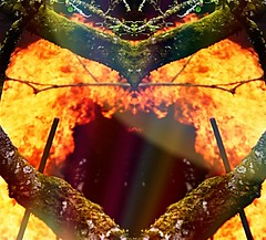 """Hearts on fire"" (jacquelineruddell) Tags: abstract abstractart fireart fire bonfire creativephotography nikon creativedesign nikond3400"