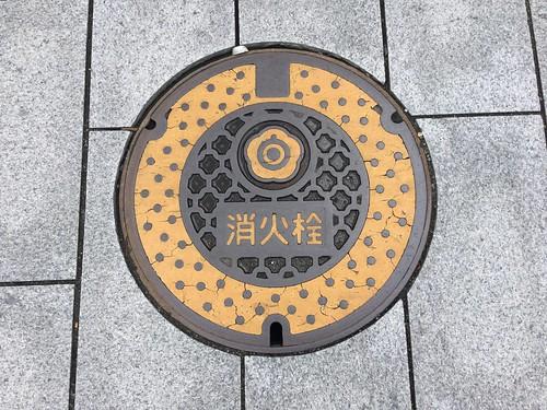 Shirakawa utility