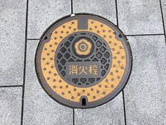 Shirakawa utility (Stop carbon pollution) Tags: japan 日本 honshuu 本州 touhoku 東北 fukushimaken 福島県 shirakawashi 白河市 マンホール manhole