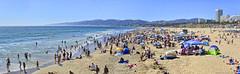 The Beach (joe Lach) Tags: santamonicabay santamonicabeach pacificocean beach sand mountains buildings girls bikinis boys men women sunbathing california joelach