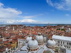 Through the eyes of a bird (Luana 0201) Tags: italy venice venezia sanmarco campanile stmarkscampanile bird blue clouds