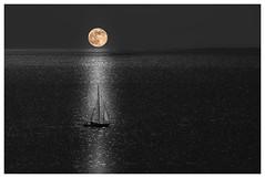 Moonshinesailor (mark.helfthewes) Tags: water moon sailboat light landschaft mond boot meer norwegen nikon d3s mondlicht ozean nordsee nacht wasser kueste insel horizont ruhe bw filter 70200mm tamron