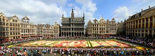 Panorama of the flower carpet, Brussels, Belgium