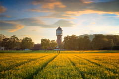 Sunset dreams (Bernhard Sitzwohl) Tags: sunset goldenhour soft watertower field wheat spring magic softlight leadinglines open outdoor landscape greatphotographers
