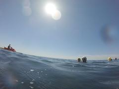 G0077884 (Visit Pilar de la Horadada) Tags: swimmers meeting point hibernismare swim natación nadar milpalmeras pilardelahoradada alicante costablanca vegabaja comunidadvalenciana quedada beach strand swimm