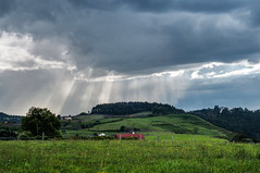 Día lluvioso (ccc.39) Tags: asturias ribadesella lluvia lluvioso nubes rayosdesol hierba landscape naturaleza