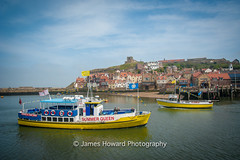 Whitby Harbour (jameshowardphotography) Tags: whitby yorkshire yellow northyorkshire north northeast northern nikon day water church beach england