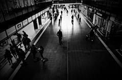 Wandelhalle. (HansEckart) Tags: schwarzweiss sw hamburg hauptbahnhof wandelhalle silhouetten urban schatten street gegenlicht