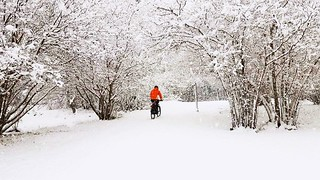 A sudden snowfall does not stop the power of will. A patient of mine leaving for work, about 15km to go.