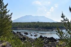 JAPON SAKURAJIMA VOLCANO (jacgroumo) Tags: japon kyushu kagoshima sakurajima volcano
