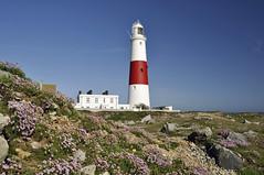 Sunny in Weymouth and Portland (dawn.v) Tags: asunnyday weymouthandportland britishseaside dorset coast seaside nikon may 2017 polarisingfilter portlandbill