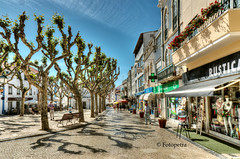 Ericeira in Portugal..............in Explore 19.05.2017 (petra.foto busy busy busy) Tags: portugal ericeira marktplatz bäume schatten sonnenlicht urlaub holiday strase geschäfte fotopetra canon eos70d