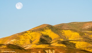 Moon over the Temblor hills