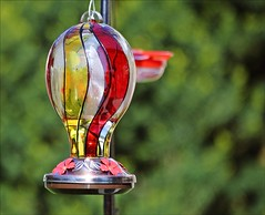 Mother's Day Gift (Sue90ca Falling Behind Again...UGH!) Tags: canon 6d humming bird feeders mothersday