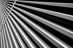 Lines (Dimitri G77) Tags: elements nikon abstract perspective blackandwhite monochrome noiretblanc construction industrial metal raster