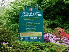 Clyne in Bloom Mid-May 2017 (1) (goweravig) Tags: mayals swansea wales uk flowers blooms sign azaleas clynegardens clyne parks gardens
