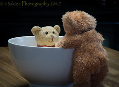 Nope (HTBT) (13skies) Tags: bears teddybears bath bathtime nope trouble bowl yellow conversation fooling foolinaround brownbear teddybeartuesday happyteddybeartuesday counter tuesday htbt