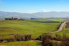 Tuscany landscape (Darea62) Tags: landscape valdorcia cypress nature poggiocovili panorama tuscany path trees road grass meadow hills unesco farm farmhouse podere cipressi paesaggio toscana country