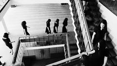 The world where no men are in (Արեն Ոսկանյան) Tags: cinema premiere film filmmaking movieart movieworld shortmovie shortfilm videography indie filmindie videoclip girls blakcandwhite