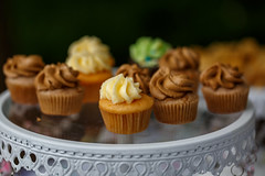 Tiny Cupcakes (Karol A Olson) Tags: greenmanfestival greenbelt maryland festival arty earthy may17 mini cupcakes dessert adorable 90indulgence 117picturesin2017