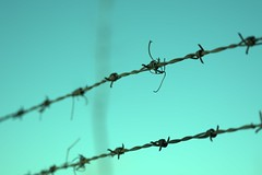 Barbed wire fence (Poppunkpizzapiece) Tags: barbed wire fence hard sky spikes
