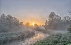 Sunrise With Mist (Martine Lambrechts) Tags: sunrise with mist nature landscape waterway tree morning