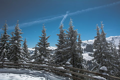Winterlandschaft (Nihil Baxter007) Tags: winter kitzbühel landschaft landscape wonderland tannen bäume trees nature snow schnee österreich austria berge mountains mountain gebirge zaun himmel sky blue white