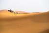 Sahara Desert (JAIRO BD) Tags: sahara saara saharadesert desert marrocos marruecos jbd