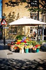 Bermondsey Street (gary8345) Tags: 2017 uk unitedkingdom britain england london londonist shop shopping snapseed greatbritain flower flowers flowerstall
