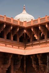 Rajasthan-221.jpg (Black Stratocaster Laurent) Tags: agra fortrouge inde rajasthan