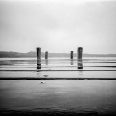 [WWPPD2017] Piers (Italian Film Photography) Tags: 6x6 bergger biancoenero pancro400 pellicola pinhole stenopeika piers molo pali water longexposure landscape paesaggio