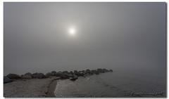 One Foggy Morning (danishpm) Tags: fog groyne helsingør rocks
