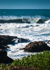 Pescadero Beach Braker (CDay DaytimeStudios w/1,000,000 views) Tags: beach california highway1 landscape ocean pacificcoast pacificcoasthighway pescadero pescaderoca pescaderostatebeach sanmateocoast surf water