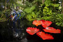 Art Imitates Life (Al Perrette) Tags: alperrette new york botanical gardens