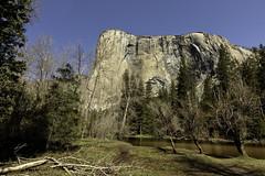 El Capitan in the Morning (lennycarl08) Tags: elcapitan yosemitenationalpark yosemite california