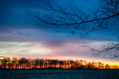 Line of Fire (tquist24) Tags: goshen hdr indiana nikon nikond5300 blue clouds evening farm field orange rural silhouette sky sunset tree trees