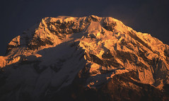 TREKKING ANNAPURNA (lupus alberto) Tags: nepal himlaya alba ghiacciaio