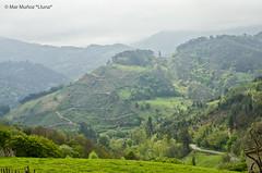 Paisajes de Mieres (Asturias) (*Lluna*) Tags: marmuñoz lluna llunafotografia mieres asturias asturies pelcamin pelcamindeasturies