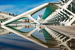 Reflection Valencia (Babs de Wild) Tags: lines city photo symmetrie perfect spain reflection architectuur valencia