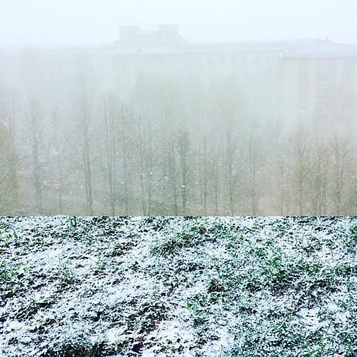 7 мая. Ижевск. Снова #зима ((